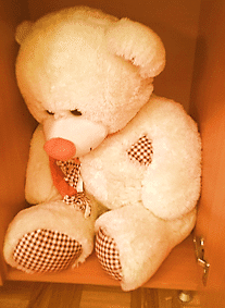White teddy bear waiting to be carefully packed for the move.